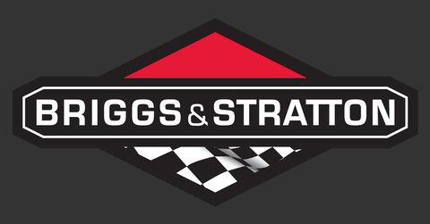 Briggs Logo Wide 1147